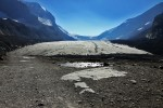 Jasper National Park - Columbia Icefields